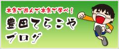 豊田てらこやブログ
